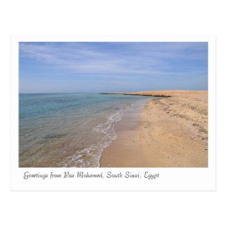 Ras Mohamed Nature Preserve Park, Sinai, Egypt Postcard