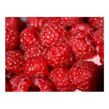 rasberry fruit closeup food design picture post card