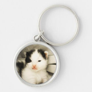 Rasberry Manx Kitten (the Ugly Duckling) Keychain