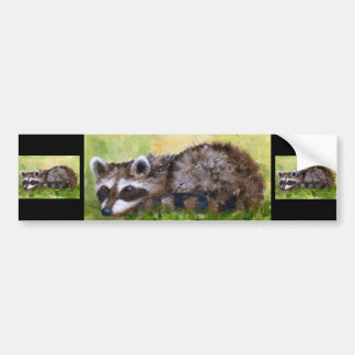 Rascal aceo Raccoon Bumper Sticker