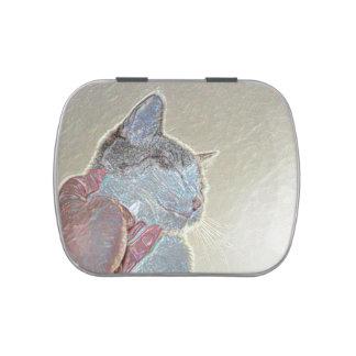 rasguño de gato debajo del mascota felino animal latas de dulces