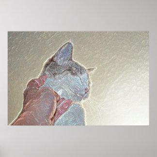 rasguño de gato debajo del mascota felino animal posters