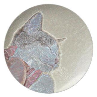 rasguño de gato debajo del mascota felino animal platos