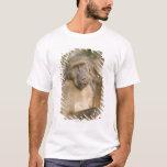 Rasguño del babuino de Chacma (ursinus del Papio) Playera