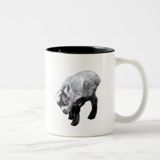 Rasguño miniatura de la cabra taza dos tonos