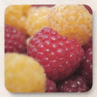 raspberries-796 beverage coaster