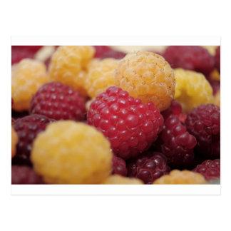 raspberries-796 postcard