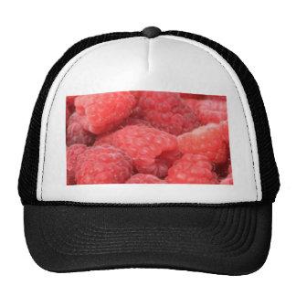 raspberries mesh hat