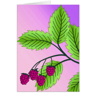 Raspberries on a branch note card