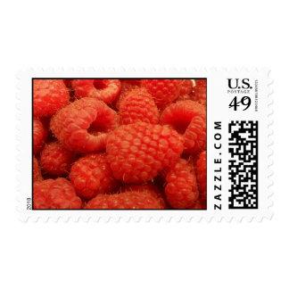Raspberries Postage