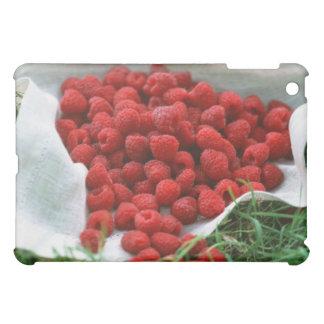 Raspberry Case For The iPad Mini