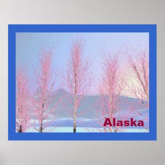Raspberry Creme Birch Posters