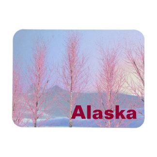 Raspberry Creme Birch Rectangular Photo Magnet
