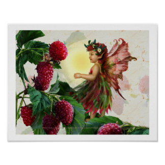Raspberry Fairy Poster
