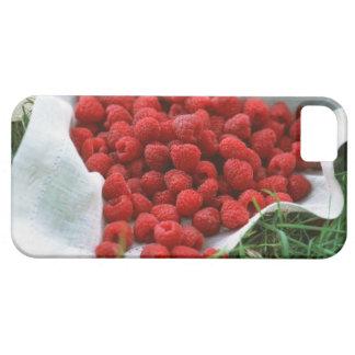Raspberry iPhone SE/5/5s Case
