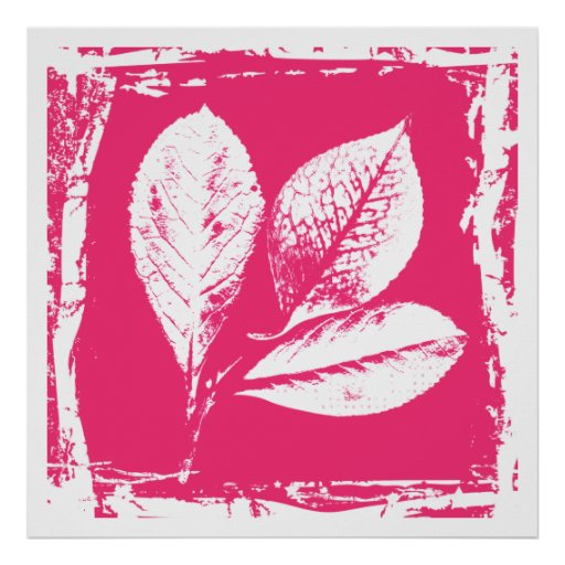 Raspberry Leaves Woodcut in Pink and White Poster