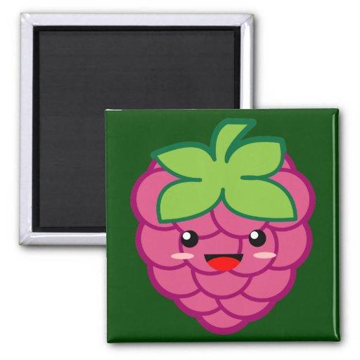 Raspberry Fridge Magnets