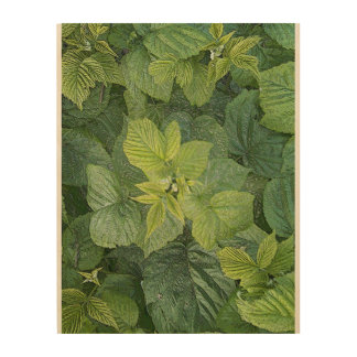 Raspberry. Pending Wood Print