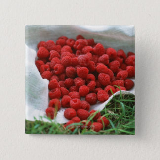 Raspberry Pinback Button