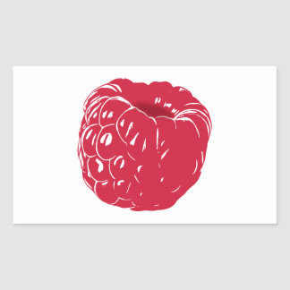 Raspberry: Rectangular Sticker
