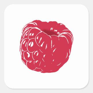 Raspberry: Square Sticker