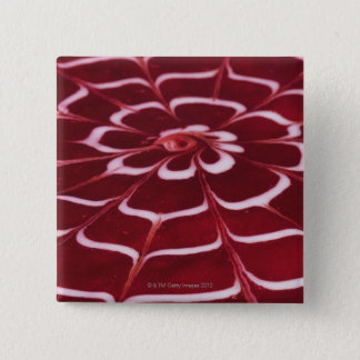 Raspberry tart button