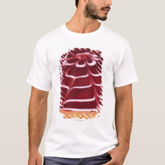 Raspberry tart T-Shirt