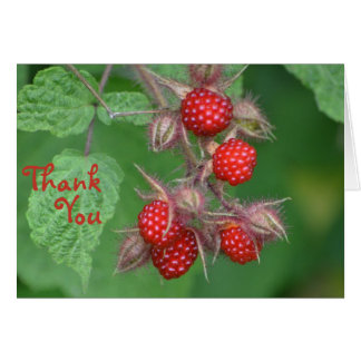 Raspberry Thank You Card