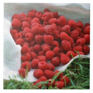 Raspberry Tile