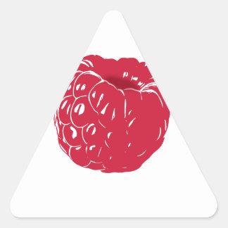 Raspberry: Triangle Sticker