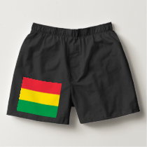 Rasta Colors Green Yellow Red Stripes Flag Pattern Boxers