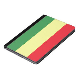 Rasta flag iPad air case
