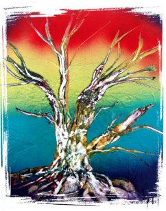 rasta red yellow green deadwood tree painting poster