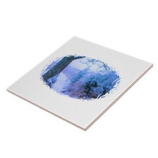 Rastro 1 Nevado Azulejo Ceramica