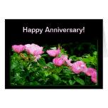Rastro Aniversario-Negro feliz del rosa Tarjetón
