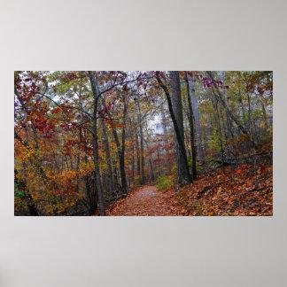 Rastro brumoso en el poster colorido del bosque de