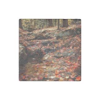 Rastro colorido del otoño en el Poconos Imán De Piedra