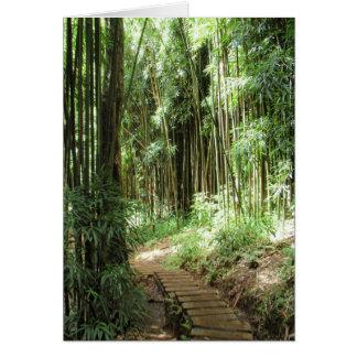 Rastro de bambú felicitacion