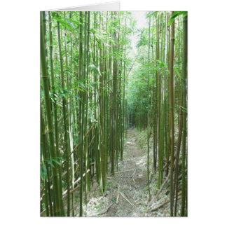 Rastro de bambú tarjetón