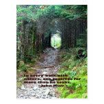 Rastro de la cueva del alumbre: Cada paseo w/natur Tarjetas Postales