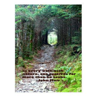 Rastro de la cueva del alumbre Cada paseo w natur Tarjetas Postales