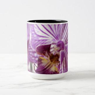 Rastro de la orquídea taza de dos tonos