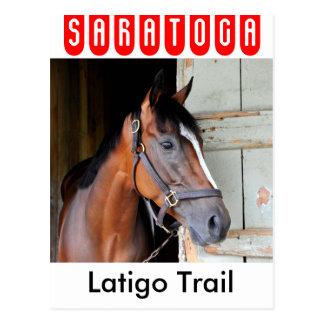 Rastro de Latigo Tarjeta Postal