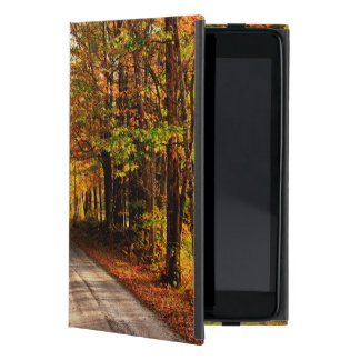 Rastro de madera con el follaje de otoño iPad mini protectores
