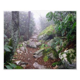 Rastro de niebla arte fotográfico