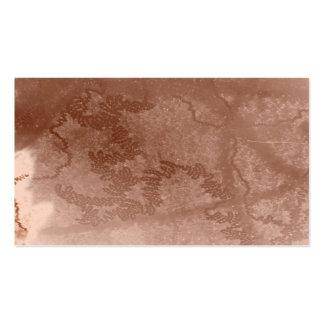 Rastro del caracol en textura marrón de la corteza plantilla de tarjeta personal