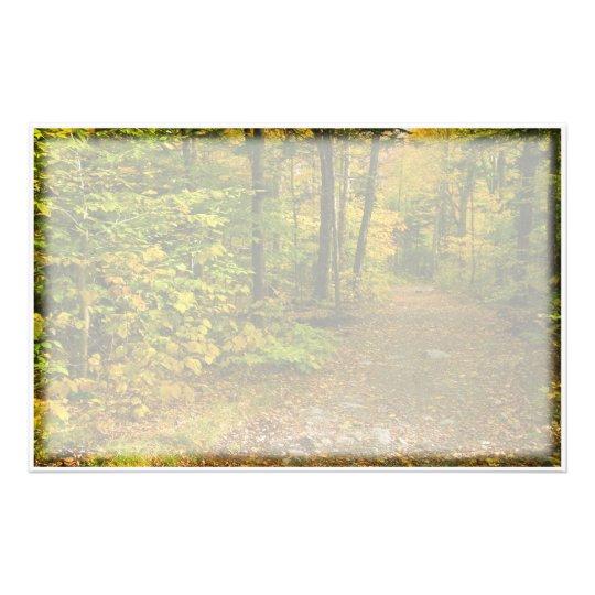 Rastro del otoño inmóvil  papeleria