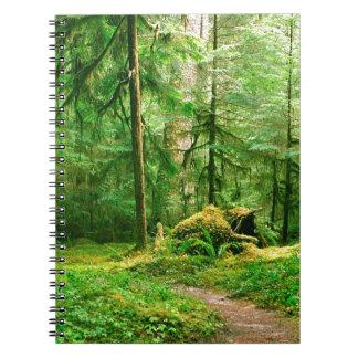 Rastro del río del lobo gris del bosque olímpico cuadernos