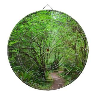 Rastro en bosque de la secoya