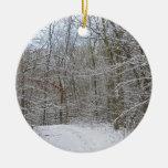 rastro nevoso del invierno ornamento de navidad